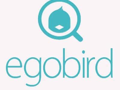 ツイッター好きな人に!完璧なエゴサを実現するアプリ「egobird」