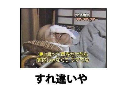 12_mini