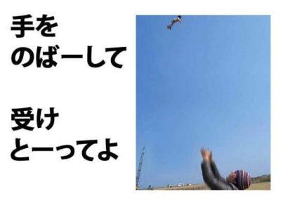 19_mini