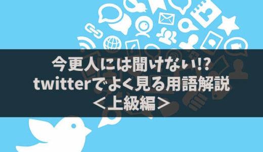 <上級編>何個知ってる?twitterでよく見かける用語の意味を解説
